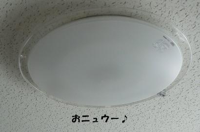 P1110977_2